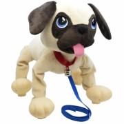 EPPE Boogie šuniukas