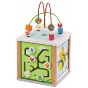 Lavinamasis edukacinis kubas The Nature Activity Cube