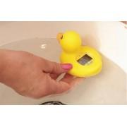 DREAM BABY vandens termometras Antytė